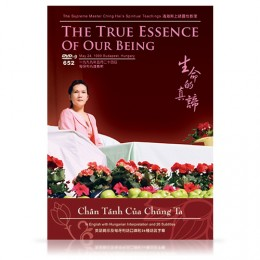 Video-0652 The True Essence of Our Being